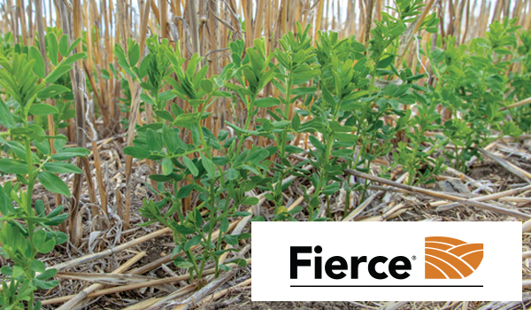 Fierce soil active pre-emergent herbicide product page and technical information