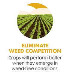 Eliminate weed competition