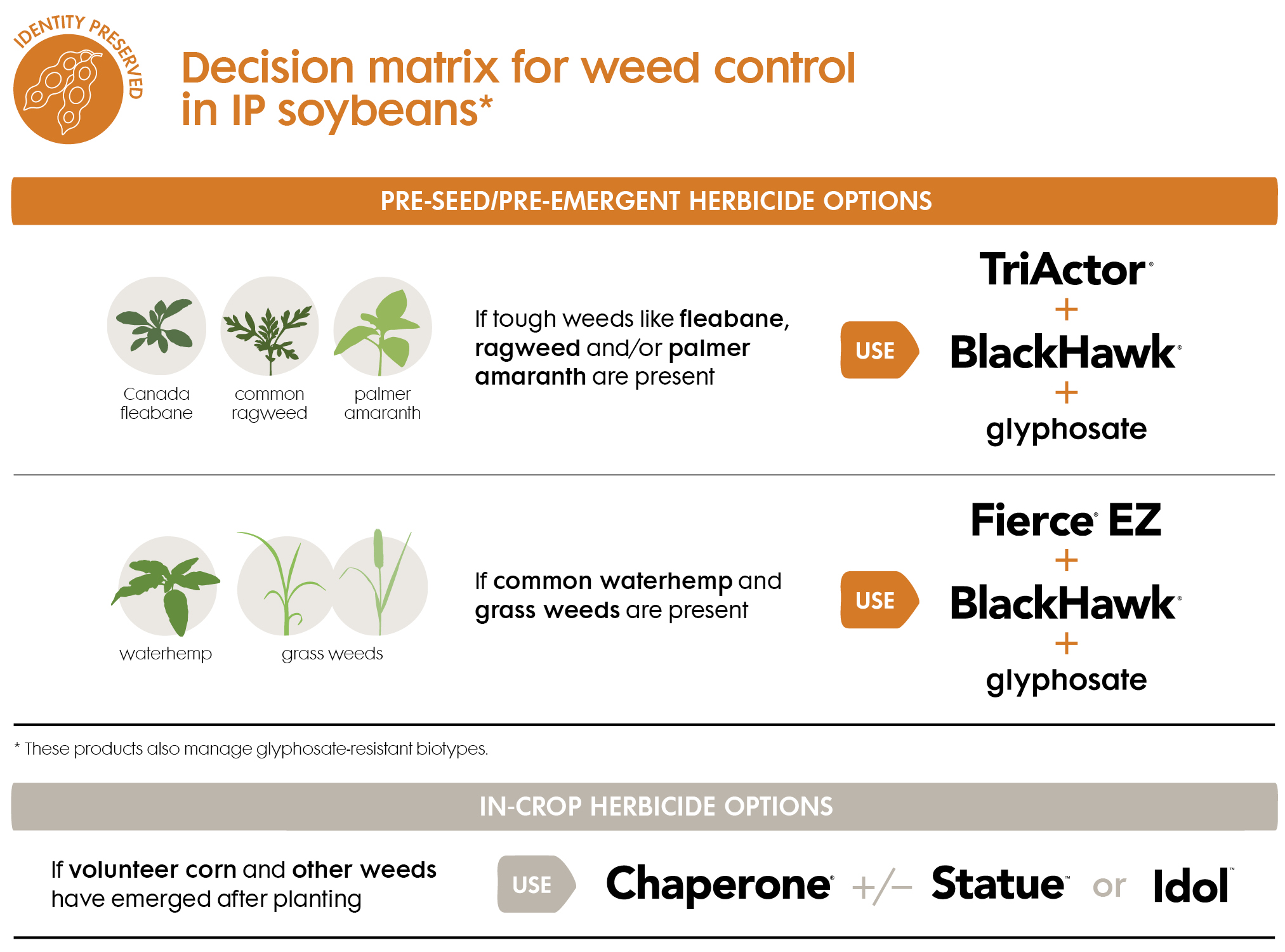 IP-soybean-weed-control-herbicides