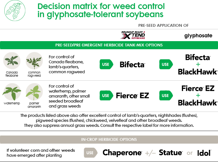 GM-Soybean-weed-control-herbicides