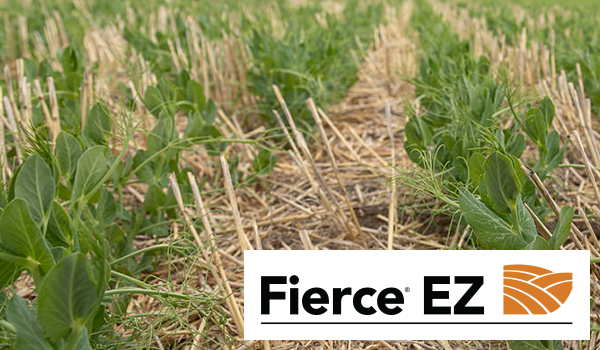 Fierce EZ soybean herbicide product page