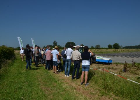 zasso-field-day-event