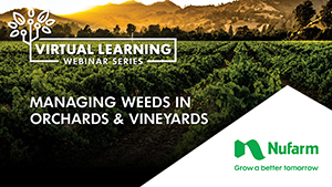 Managing Weeds in Orchards and Vineyards