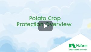 Video: Potato Crop Protection Overview